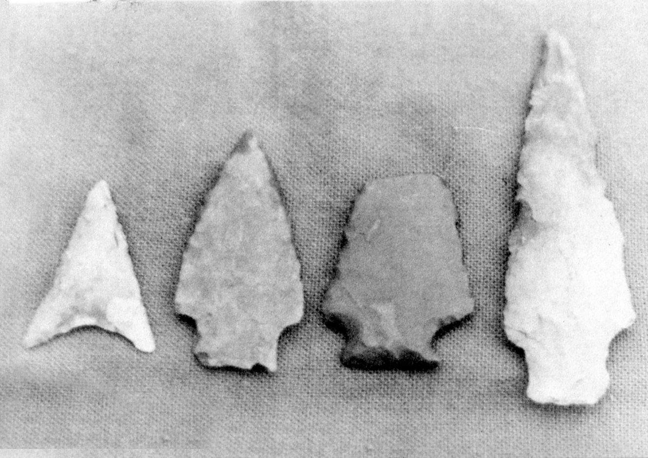 (above) These arrowheads and the axe head are some of the Indian artifacts found along the Rahway River by Rahway residents over the years.