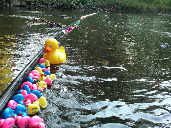 CRANFORD'S ANNUAL DUCKY DERBY RETURNS THIS OCTOBER @ Rahway River at Sperry Park