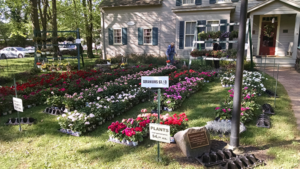 Spring Plant Sale at Mountainside's Hetfield House @ Deacon Andrew Hetfield House