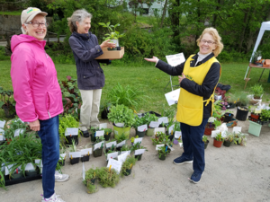 Watchung Garden Club's Plant Sale 2019 @ Best Lake parking lot