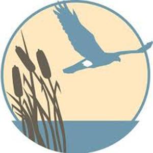 Hawk Rise Goes Batty! @ Hawk Rise Sanctuary