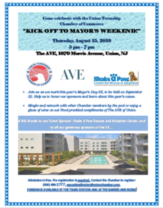 Union Township: Kick off to the Mayor's Weekend Networking Event @ The AVE