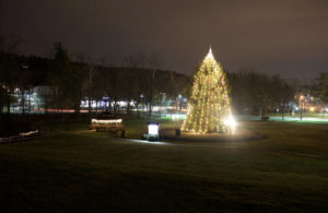 Watchung Rescue Squad 29th Annual Tree of Lights @ Watchung Village Green